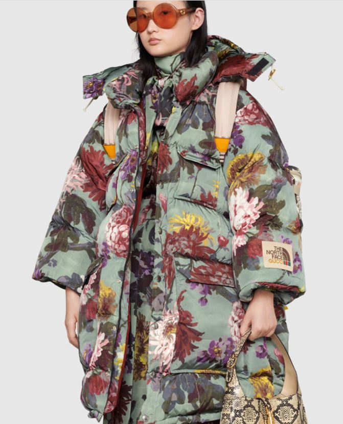 the northface gucci